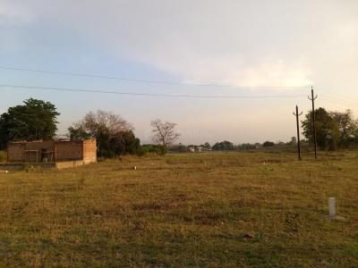 14636 Sq.ft Residential Plot for Sale in Gopal Bihar, Sambalpur