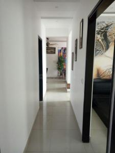 Gallery Cover Image of 1100 Sq.ft 2 BHK Apartment for rent in Raj Nagar Extension for 9000