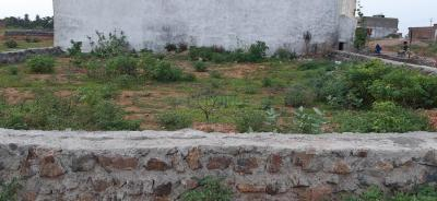 Gallery Cover Image of  Sq.ft Residential Plot for buy in Rajghat Colony for 1250000