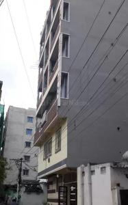Building Image of Kiwi Nest Executive Men's Hostel in Gachibowli