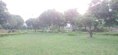100 Sq.ft Residential Plot for Sale in Crossings Republik, Ghaziabad