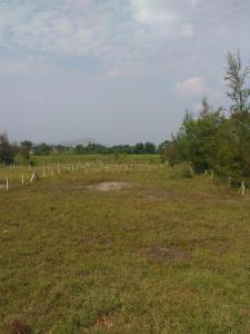 Gallery Cover Image of  Sq.ft Residential Plot for buy in Hinjewadi for 9000000