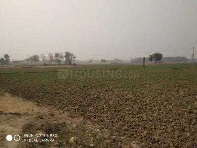 1360 Sq.ft Residential Plot for Sale in Hakimpet, Hyderabad
