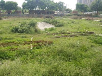 Gallery Cover Image of 200 Sq.ft Residential Plot for buy in Sector 130 for 10500000