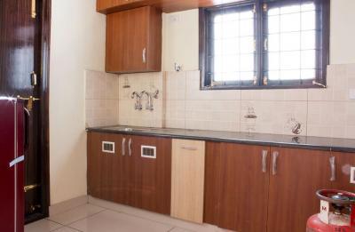 Kitchen Image of PG 4642826 Mahadevapura in Mahadevapura