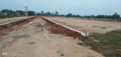206 Sq.ft Residential Plot for Sale in Katheru, Rajahmundry