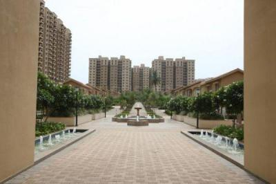 Gallery Cover Image of 1960 Sq.ft 3 BHK Apartment for rent in Chokkanahalli for 35000
