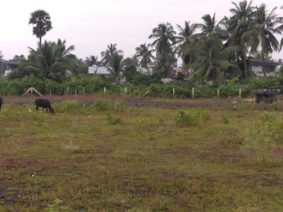 183 Sq.ft Residential Plot for Sale in Katheru, Rajahmundry