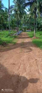 6000 Sq.ft Residential Plot for Sale in Melamuri, Palakkad