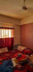 Gallery Cover Image of 2000 Sq.ft 3 BHK Apartment for buy in Palsikar Colony for 7000000