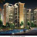 Gallery Cover Image of 2200 Sq.ft 3 BHK Apartment for buy in Tulip Ace, Sector 89 for 8850000