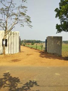 1200 Sq.ft Residential Plot for Sale in Uttara, Bhubaneswar