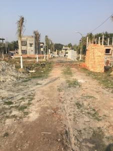 Gallery Cover Image of  Sq.ft Residential Plot for buy in Joka for 600000