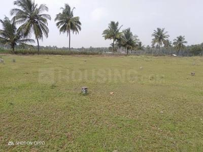 5000 Sq.ft Residential Plot for Sale in Chelidanga, Asansol