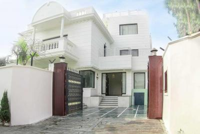 Gallery Cover Image of 10000 Sq.ft 3 BHK Independent Floor for rent in Vasant Kunj for 175000