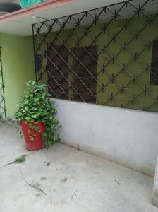 Gallery Cover Image of 2500 Sq.ft 3 BHK Independent Floor for rent in Kankarbagh for 16000
