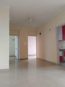 Gallery Cover Image of 1500 Sq.ft 3 BHK Independent Floor for rent in 559, Sector 9 for 20000