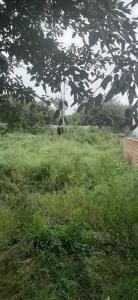 77 Sq.ft Residential Plot for Sale in Sector 63 A, Noida