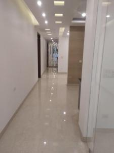 Gallery Cover Image of 2385 Sq.ft 3 BHK Independent Floor for rent in Panchsheel Enclave for 101000