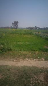 8100 Sq.ft Residential Plot for Sale in Danapur, Patna