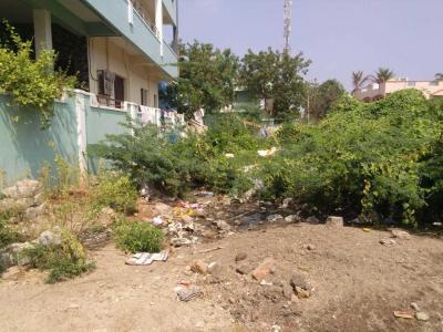 Gallery Cover Image of  Sq.ft Residential Plot for buy in Adarsh Nagar for 6000000