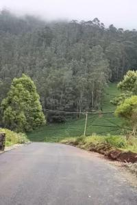 9583 Sq.ft Residential Plot for Sale in Coonoor, Nilgiris