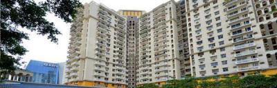 Gallery Cover Image of 2250 Sq.ft 4 BHK Apartment for rent in DLF Belvedere Tower, DLF Phase 3 for 55000