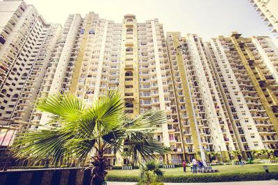 Gallery Cover Image of 1364 Sq.ft 3 BHK Apartment for buy in Trident Embassy, Noida Extension for 4910400