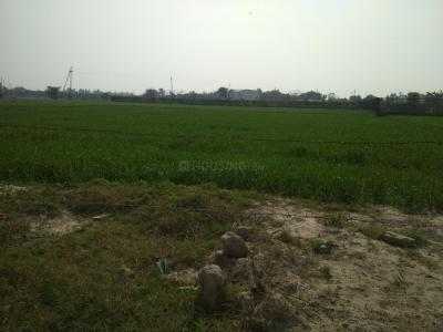 14400 Sq.ft Residential Plot for Sale in Sector 133, Noida