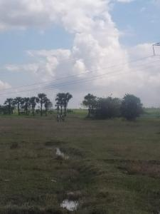 1320 Sq.ft Residential Plot for Sale in Vaiyavoor, Chennai