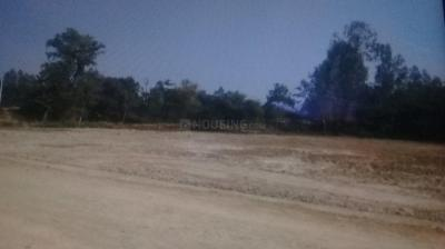 Gallery Cover Image of  Sq.ft Residential Plot for buy in Amausi for 180000