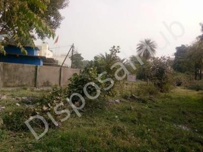 11761 Sq.ft Residential Plot for Sale in Baghmugalia, Bhopal