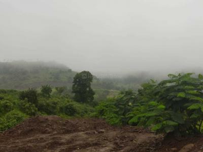 4300 Sq.ft Residential Plot for Sale in Wadgaon Sheri, Pune