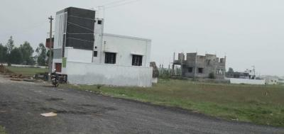 Gallery Cover Image of  Sq.ft Residential Plot for buy in Tambaram for 1380000