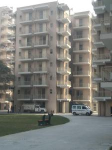 Gallery Cover Image of 730 Sq.ft 2 BHK Apartment for rent in Sector 86 for 9000