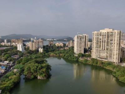 Gallery Cover Image of 910 Sq.ft 2 BHK Apartment for rent in Supreme Lake Florence, Powai for 40000