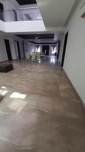 Gallery Cover Image of 11000 Sq.ft 6 BHK Villa for rent in DLF Farms for 500000