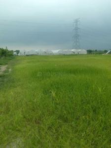 5000 Sq.ft Residential Plot for Sale in Sajjan Nagar, Udaipur