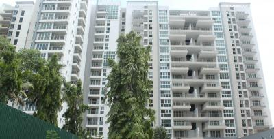 Gallery Cover Image of 1740 Sq.ft 3 BHK Apartment for rent in Whitefield for 48500
