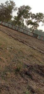 1360 Sq.ft Residential Plot for Sale in Chandauti, Gaya