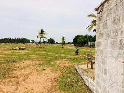 1140 Sq.ft Residential Plot for Sale in Thamaraipakkam, Chennai