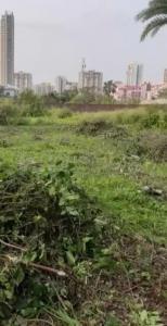 5040 Sq.ft Residential Plot for Sale in New Town, Kolkata