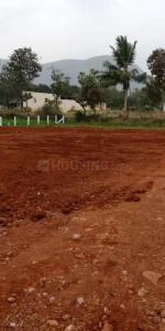 1260 Sq.ft Residential Plot for Sale in Payakapuram, कृष्ण