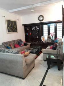 Living Room Image of PG 4544159 Sarita Vihar in Sarita Vihar
