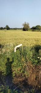 1500 Sq.ft Residential Plot for Sale in Bakrol Part, Anand