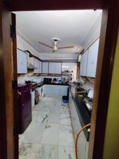 Kitchen Image of Urbanroomz in DLF Phase 2