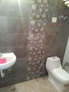 Bathroom Image of Seema PG in Palam