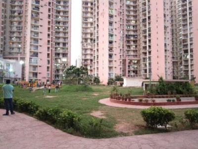 Gallery Cover Image of 1850 Sq.ft 3 BHK Apartment for rent in Sector 99 for 17500