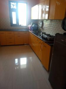 Gallery Cover Image of 912 Sq.ft 2 BHK Apartment for rent in Sector 17 for 22000