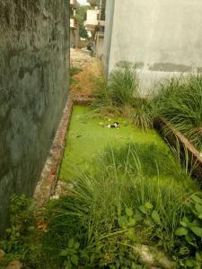 419 Sq.ft Residential Plot for Sale in Burari, New Delhi